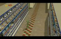 Bernard-Im-Supermarkt