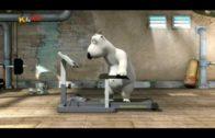 Bernard-Im-Fitnessclub