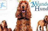 2-Wunder-Hunde-ganzer-Kinderfilm-Spielfilm-fr-Kinder-deutsch-Kinderfilme-Kinderkino-Kixi-1