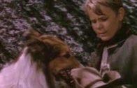 Lassies-grtes-Abenteuer-Kinderfilm-Spielfilm-Klassiker-fr-Kinder-deutsch-ganze-Kinderfilme-1