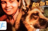 Rin-Tin-Tin-Die-Rckkehr-Spielfilm-fr-Kinder-in-voller-Lnge-deutsch-ganze-Kinderfilme-1