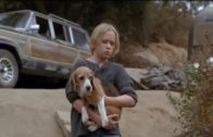 Vier-Pfoten-auf-der-Flucht-Kinderfilm-ganzer-Spielfilm-mit-Hunden-deutsch-Kinderfilme-kostenlos-1