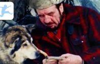 Jack-London-Trapper-Wolf-und-Fhrtensucher-Abenteuerfilm-Familienfilm-in-voller-Lnge-1