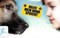 Hilfe-Mein-Hund-spricht-Komdie-Hundefilm-Familienfilm-in-voller-Lnge-kostenlose-ansehen-online-1