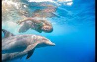 Das-Mdchen-und-der-Delfin-Kinderfilm-deutsch-Tierfilm-ganze-Kinderfilme-kostenlos-1
