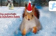 Das-zauberhafte-Eichhrnchen-Weihnachtsfilm-fr-Kinder-in-voller-Lnge-kostenlos-ansehen-deutsch-1