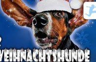 2-Weihnachtshunde-Familienfilm-Komdie-HD-deutsch-kompletter-Film-1