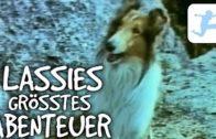 Lassies-grsstes-Abenteuer-Kinderfilm-deutsch-ganzer-Film-Familienfilm-ganze-Hundefilme-1