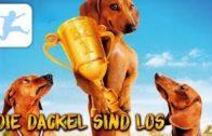 Die-Dackel-sind-los-ganzer-Film-fr-Kinder-kostenlos-ganzer-Hundefilm-Kinderfilme-deutsch-online-1