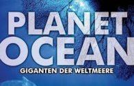 Planet-Ocean-Giganten-der-Weltmeere-Tierfilm-fr-Kinder-Tierdoku-Lernfilm-Lehrfilm-deutsch-1