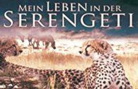 Mein-Leben-in-der-Serengeti-Naturdokumentation-deutsch-Schulfilm-Lehrfilm-ganze-gratis-Doku-1